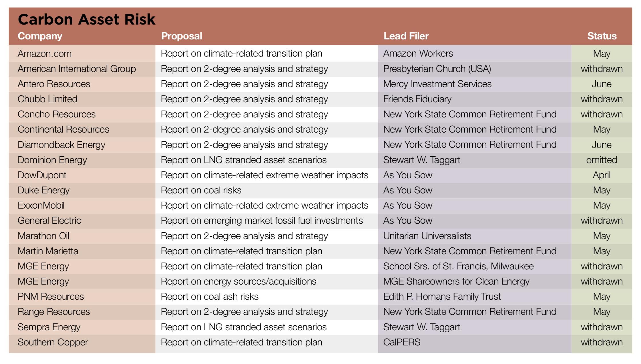 Carbon Asset Risk.jpg