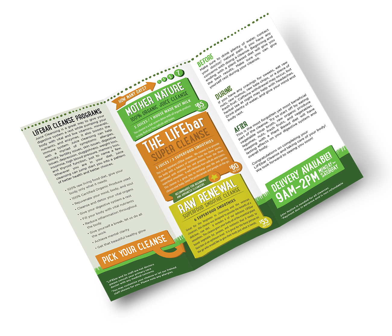 LIFEbar Cleanse Brochure
