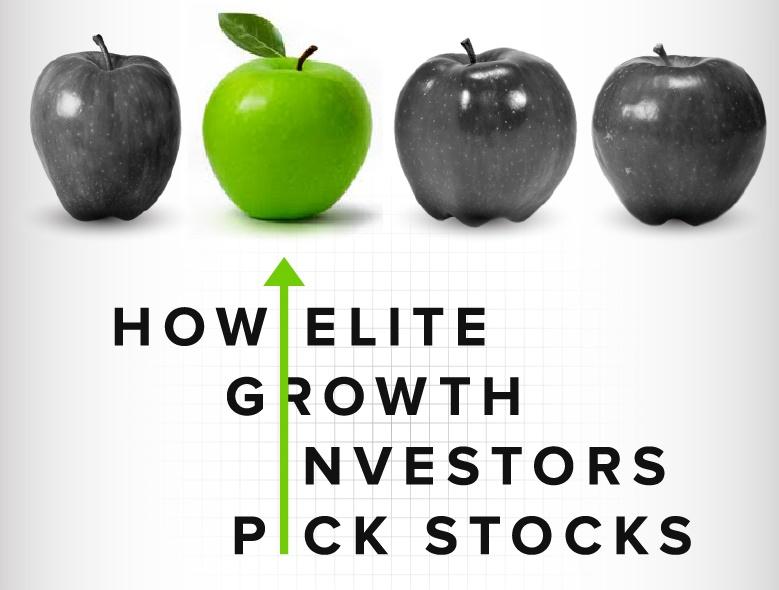 HOW ELITE GROWTH INVESTORS PICK STOCKS -