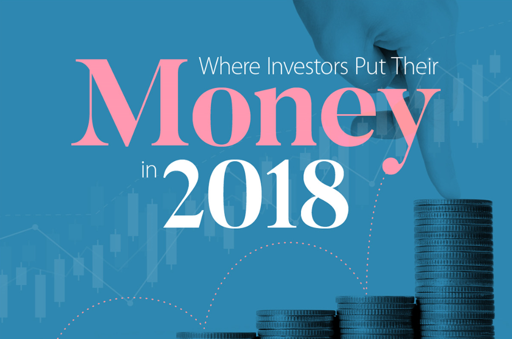 WHER INVESTORS PUT THEIR MONEY IN 2018 -