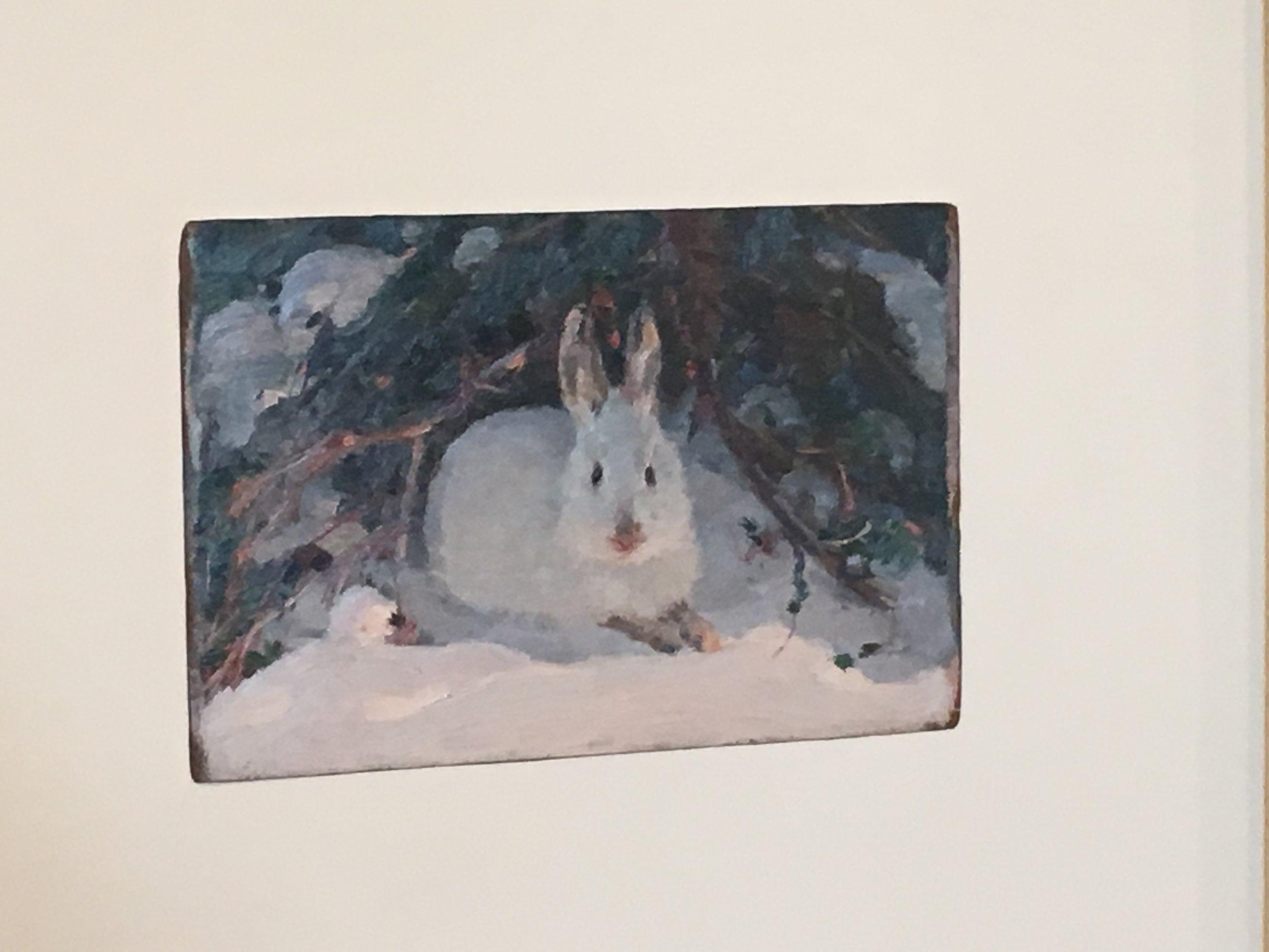 Found my bunny