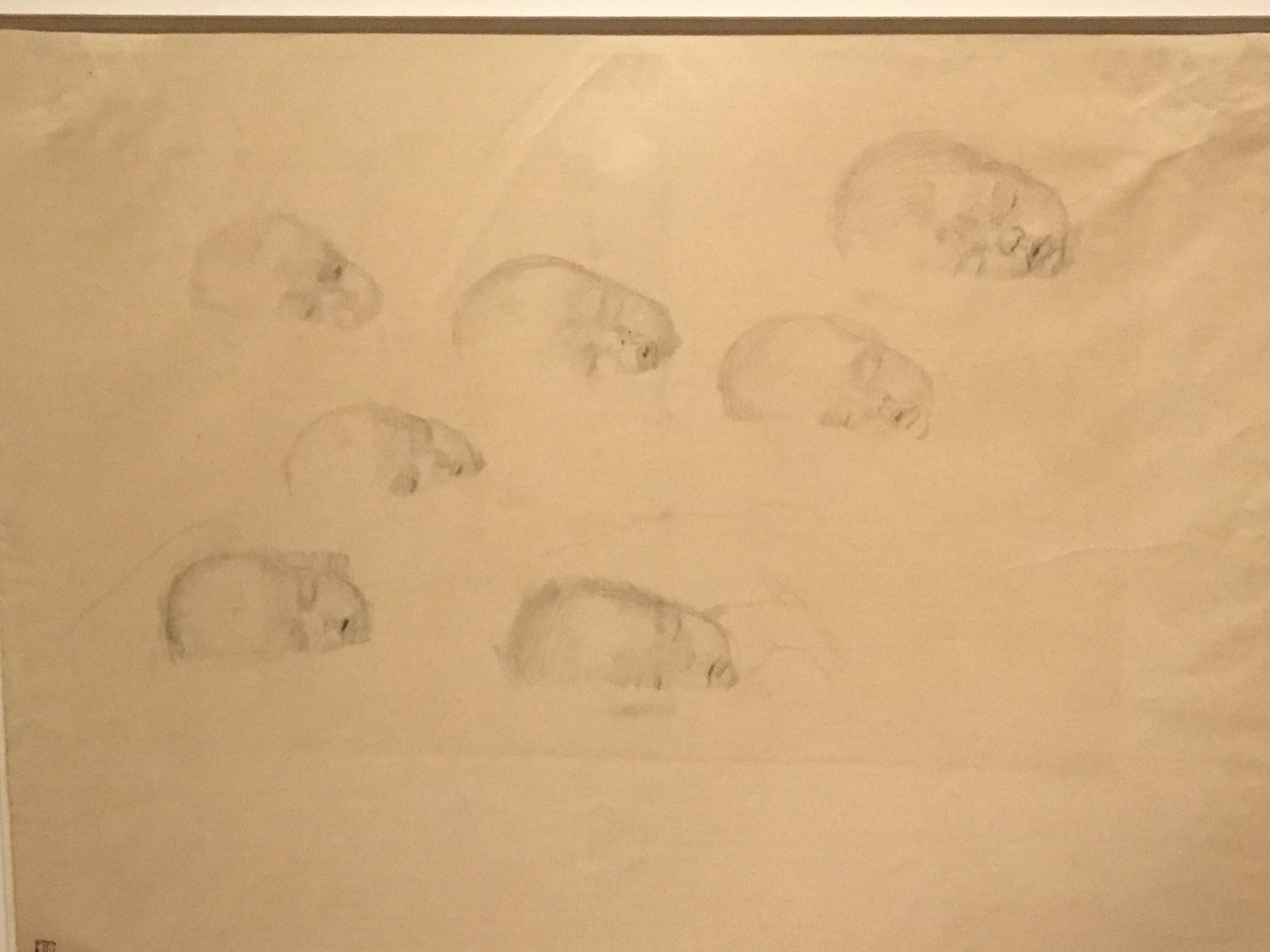 """Seven studies of infants"" by Kathe Kollwitz"