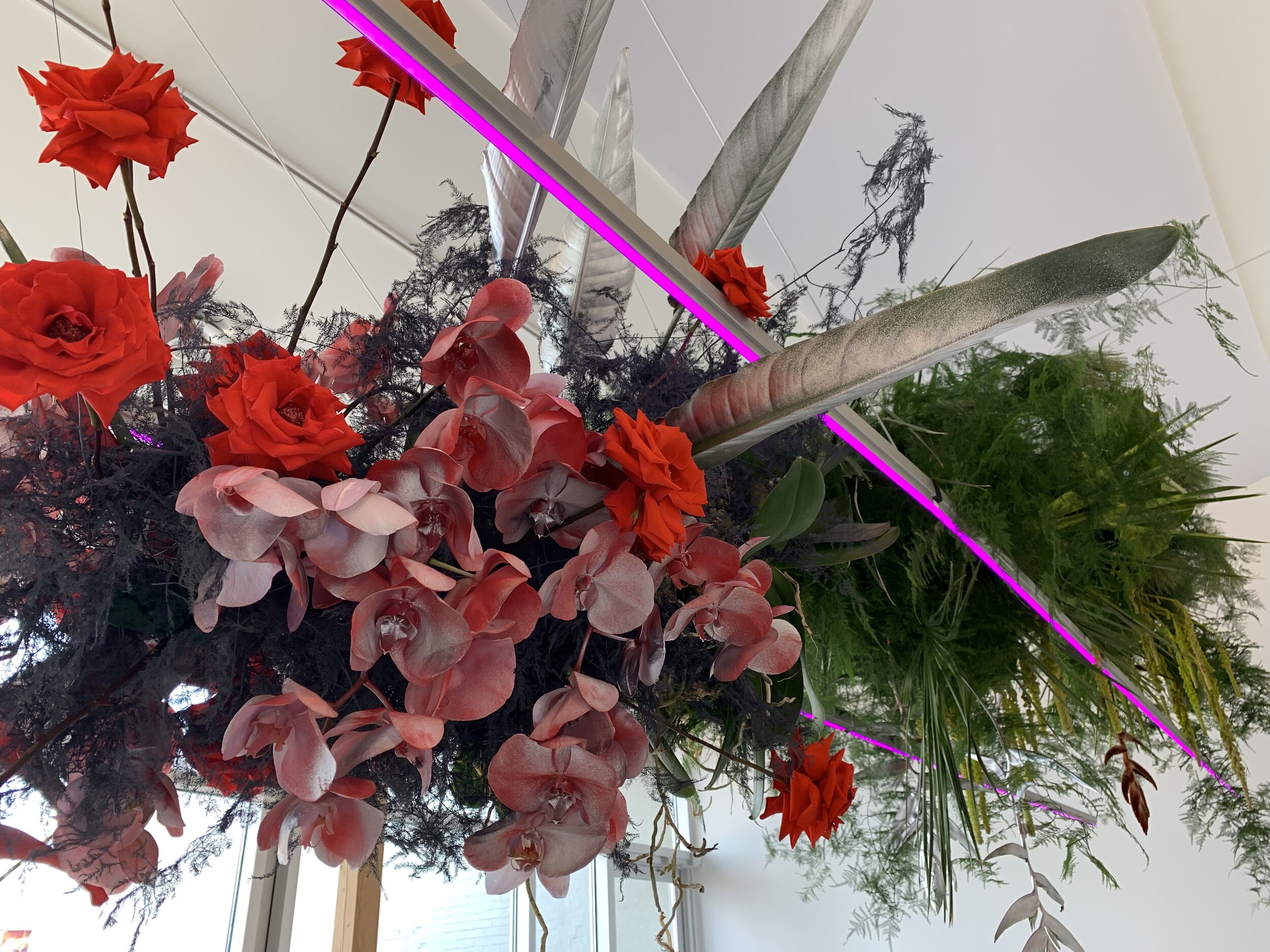 """Dinner in a Grow Room. - CONCEPT: to reimagine the cannabis plant from a """"higher"""" perspective (!!)using materials commonly found in grow FACILITIES, we created a reflective room with rows of custom designed pink led lights interacting with a SUSPENDED floral installation."""