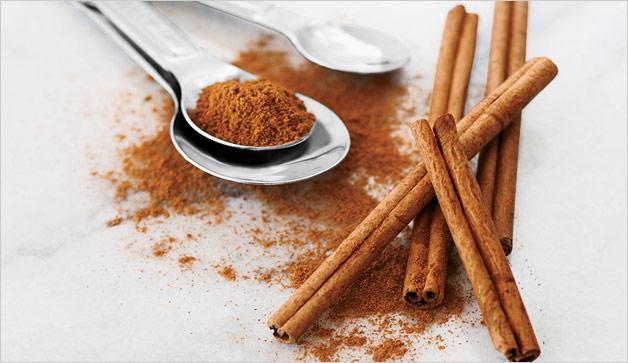 cinnamon-PV0313-628x363.jpg