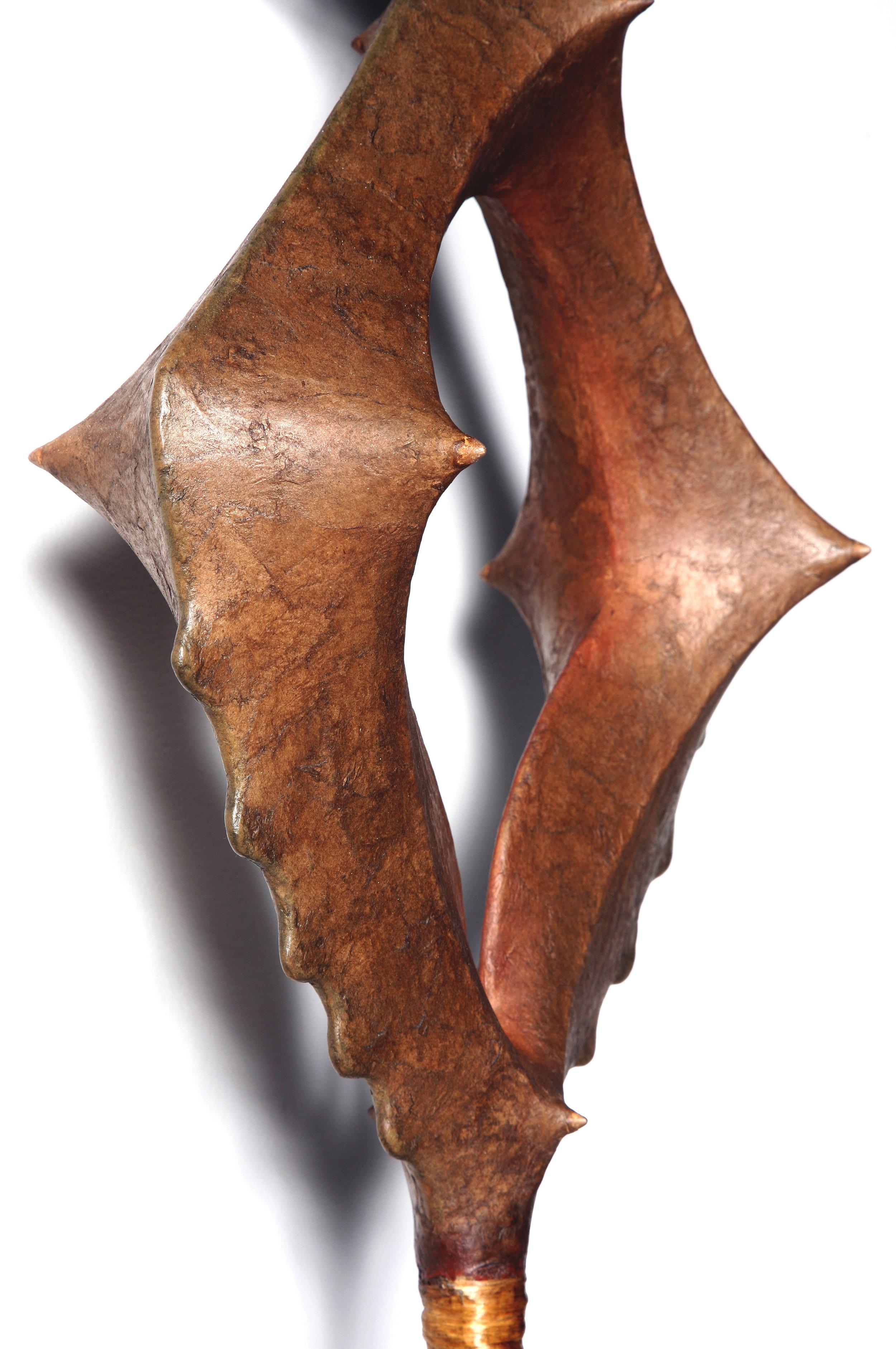 Rattle-Shield-Detail-300.jpg
