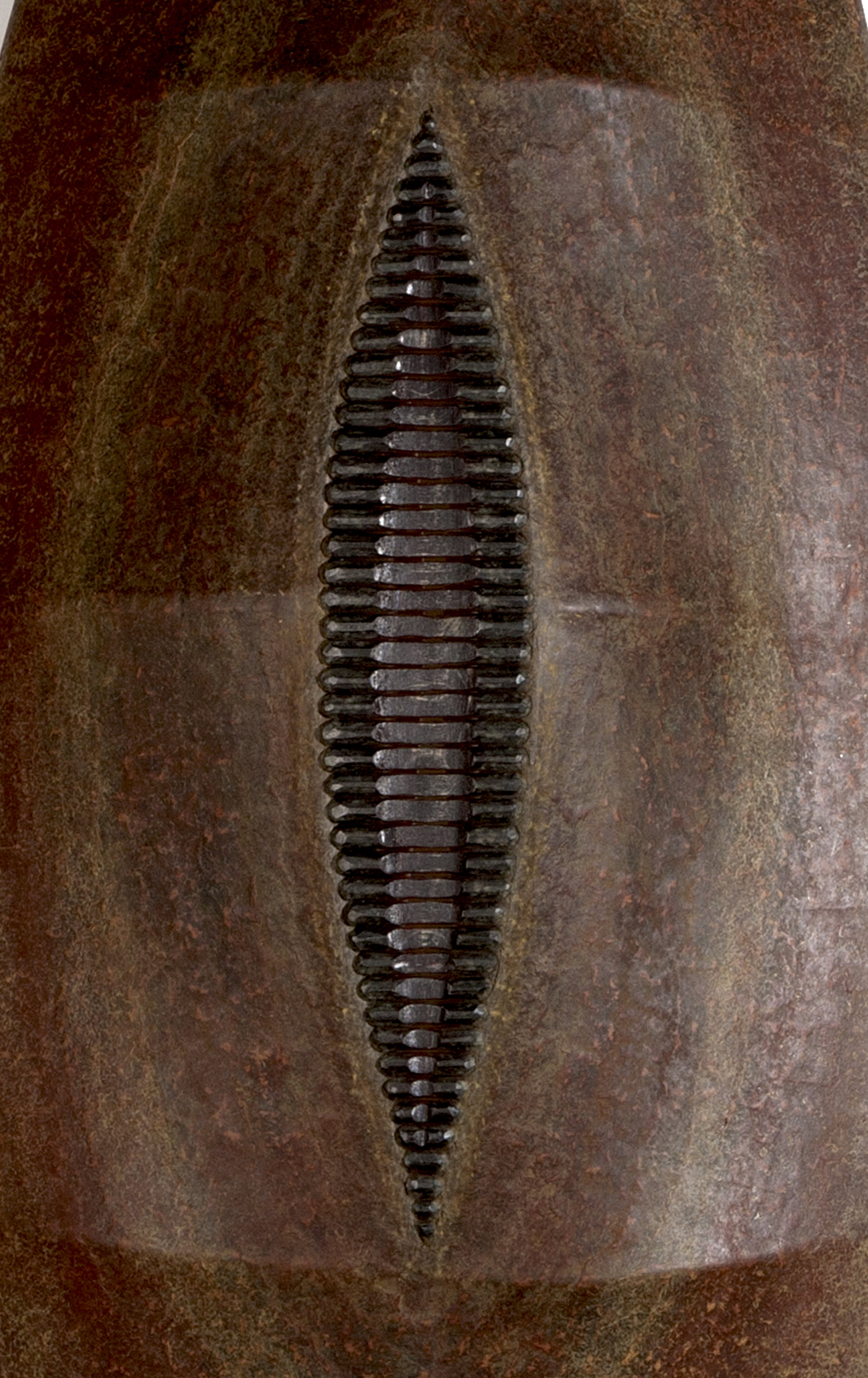 *Slit-Shield-detail-a.jpg