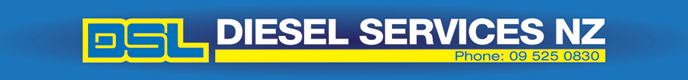 171206 Diesel-Services-Logo-New.png