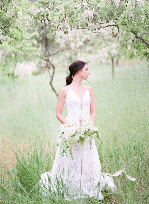 Spokane blush by Hayley Paige Delta wedding dress photo shoot in black locust trees