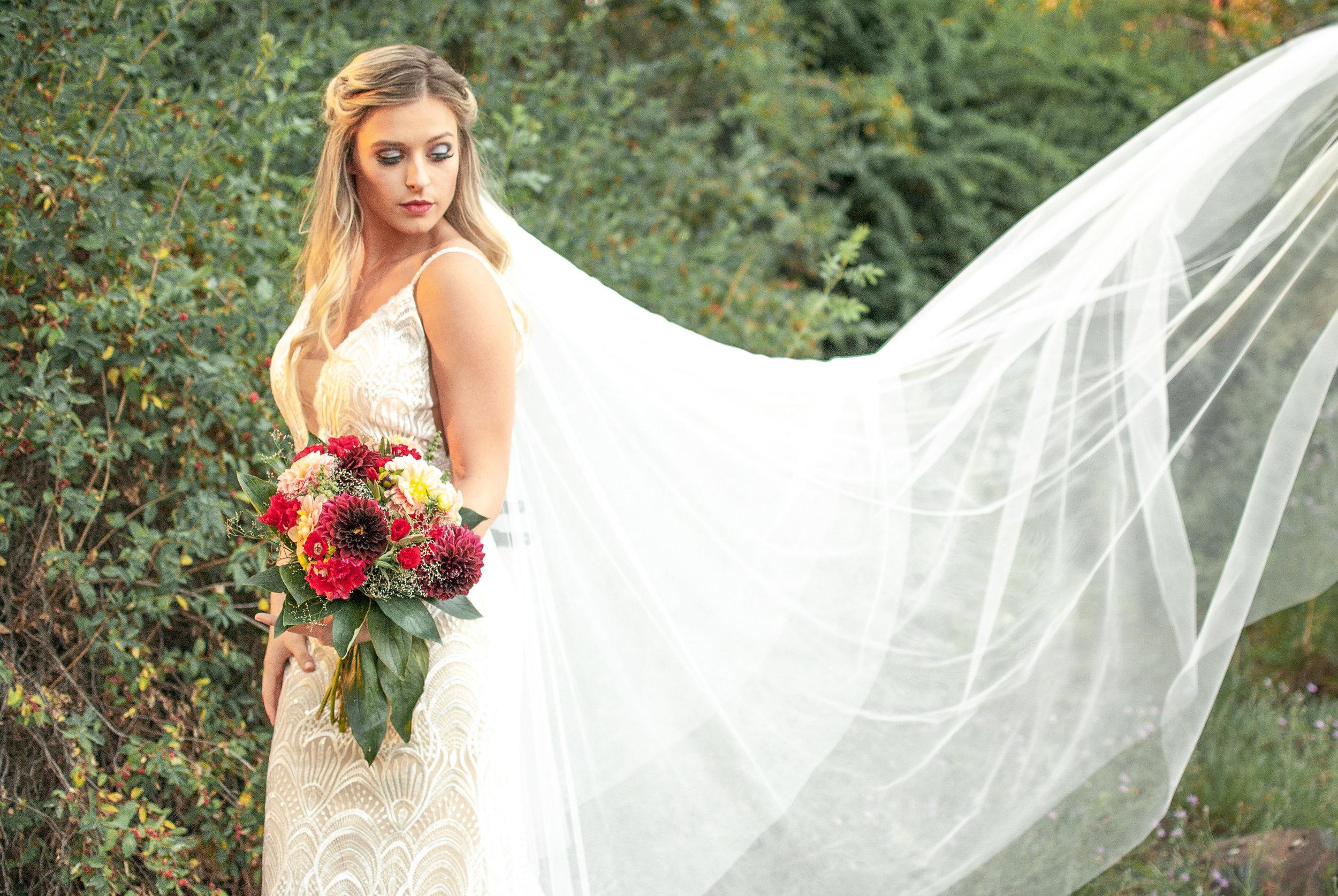 veil in the air image wedding dress spokane