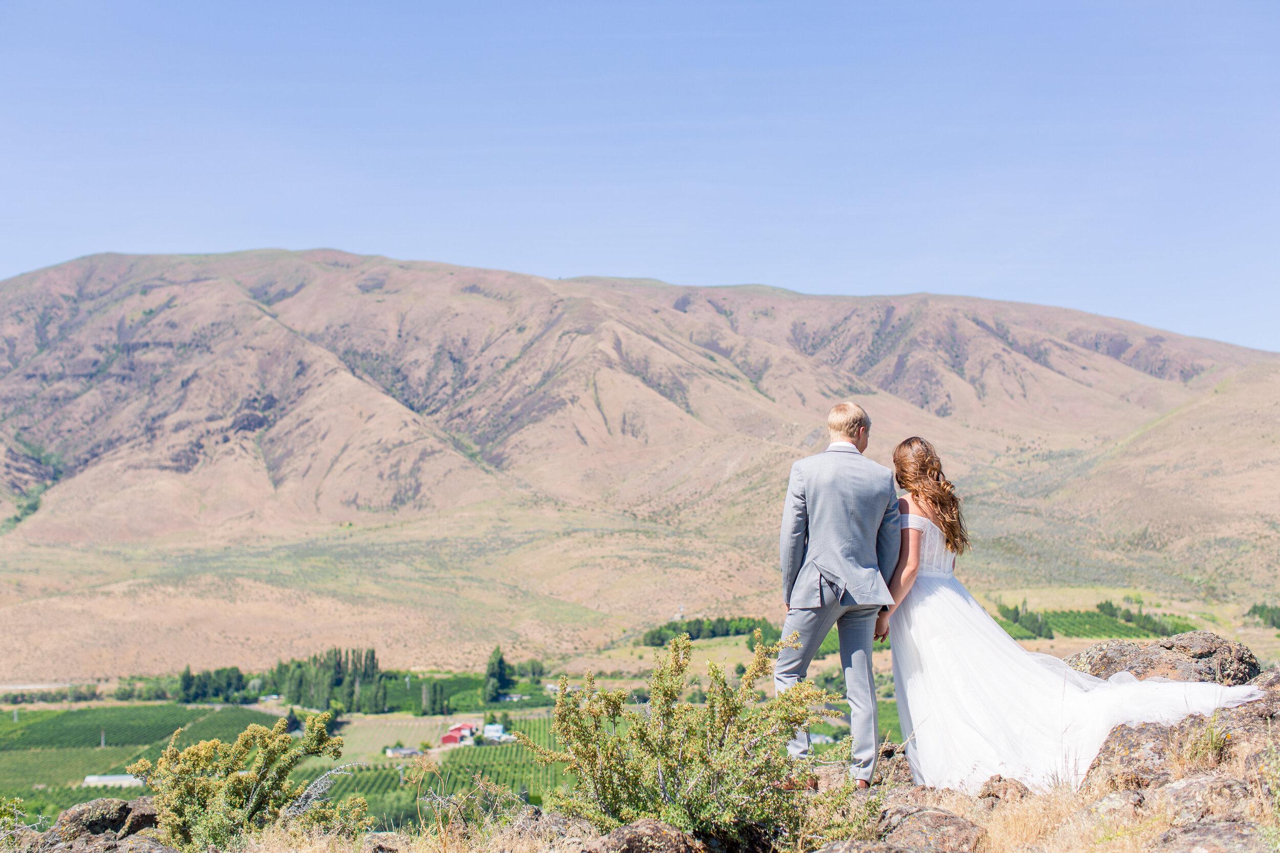 bride and groom on a hill spokane