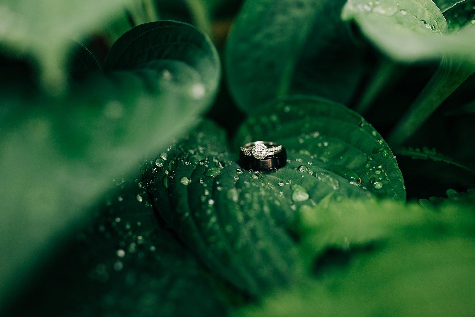 wedding rings bride and groom spokane