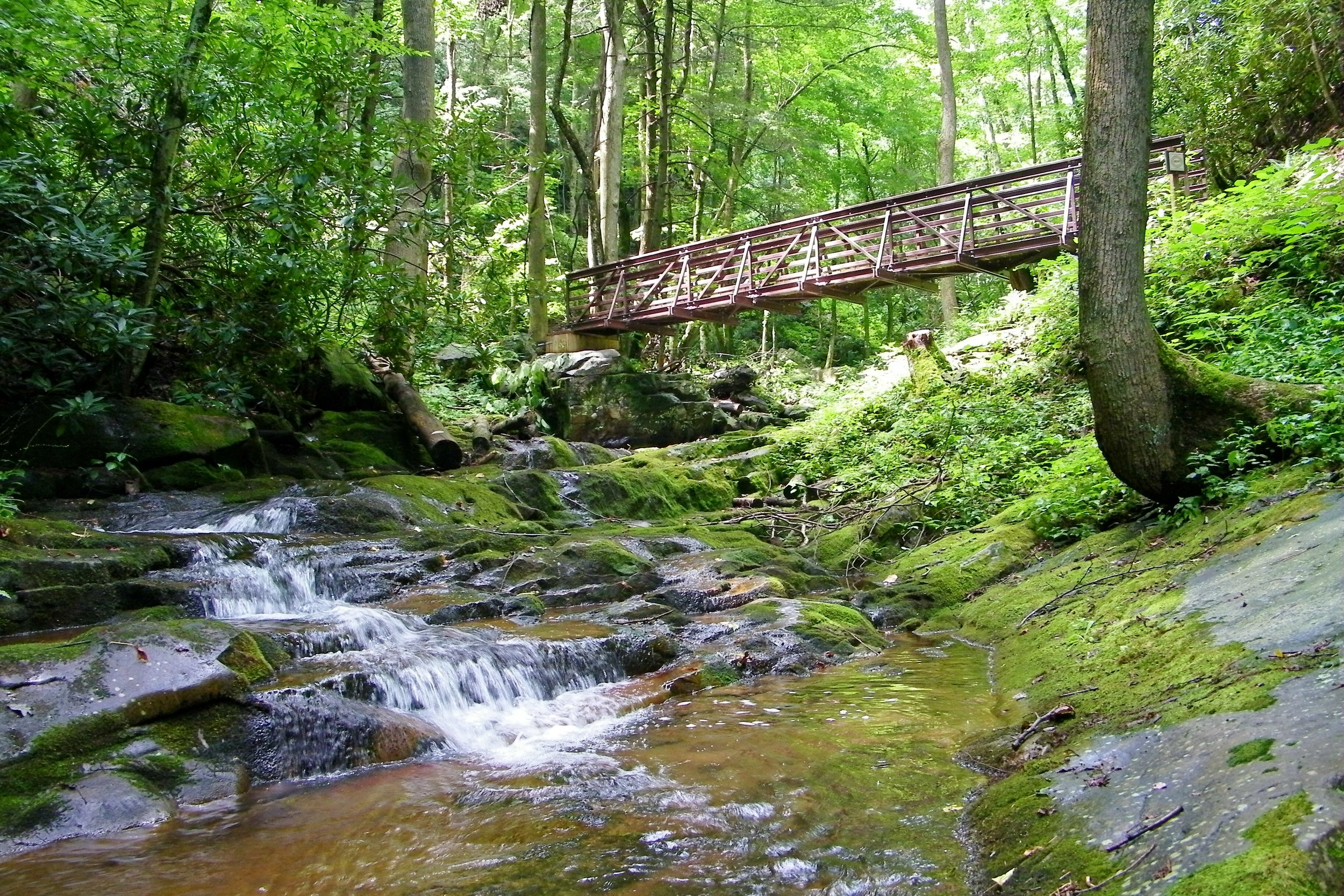 Margarette Falls, Cherokee National Forest © Brian Greer