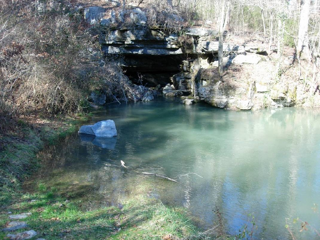 Part of the Sequatchie Cave State Natural Area is seen in this photo provided by the Tennessee Department of Environment and Conservation (TDEC). Photo by Contributed Photo/Times Free Press.