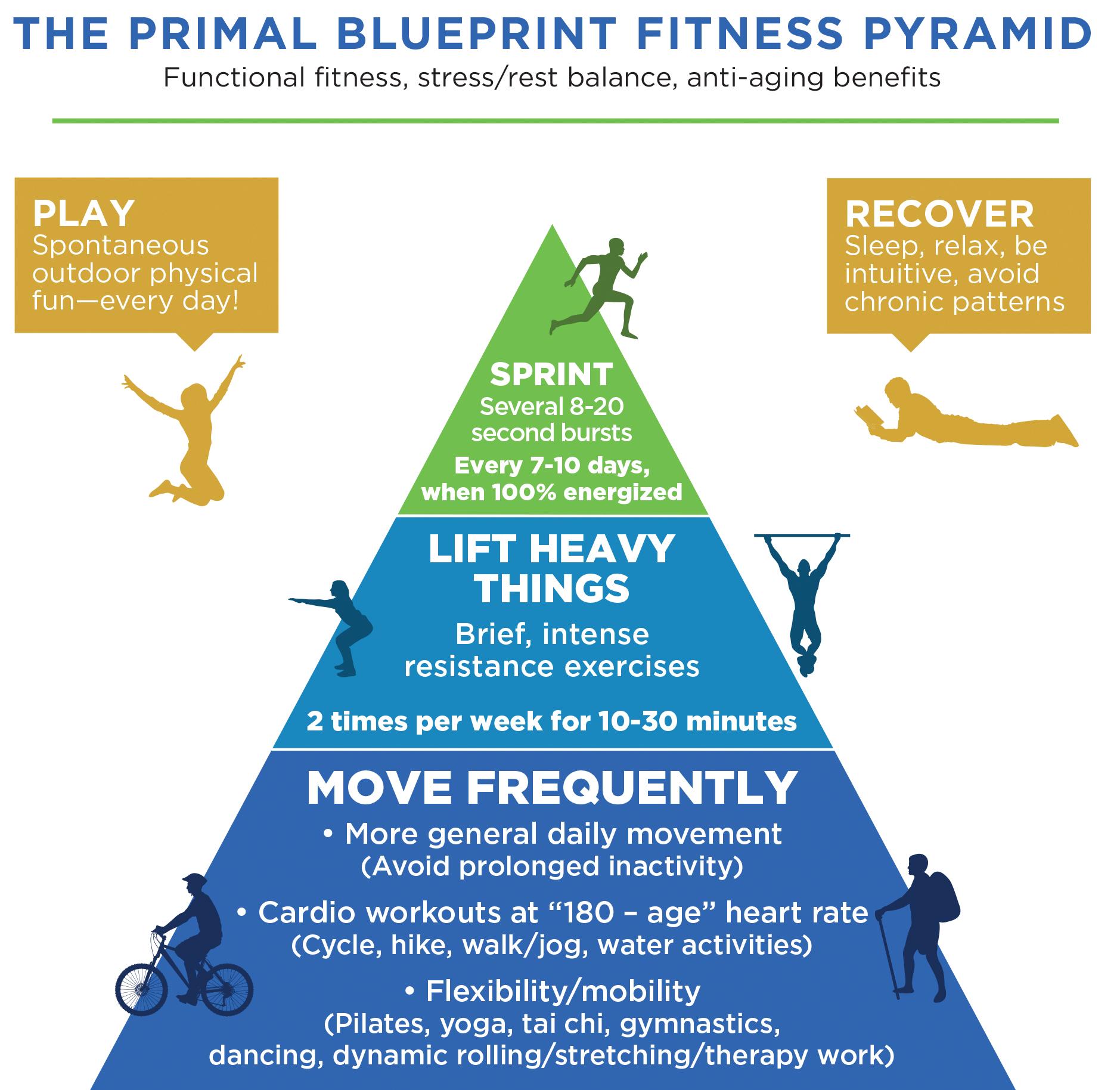 PB-Fitness-Pyramid-2016.jpg