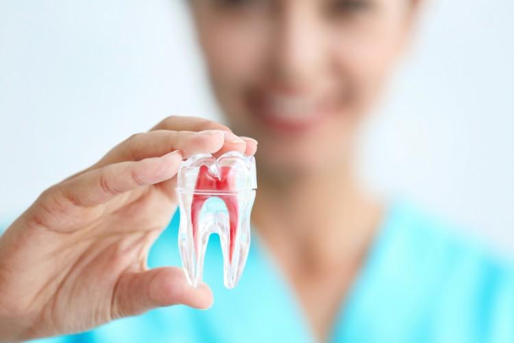 dental hygiene smile style dental bulleen.jpg