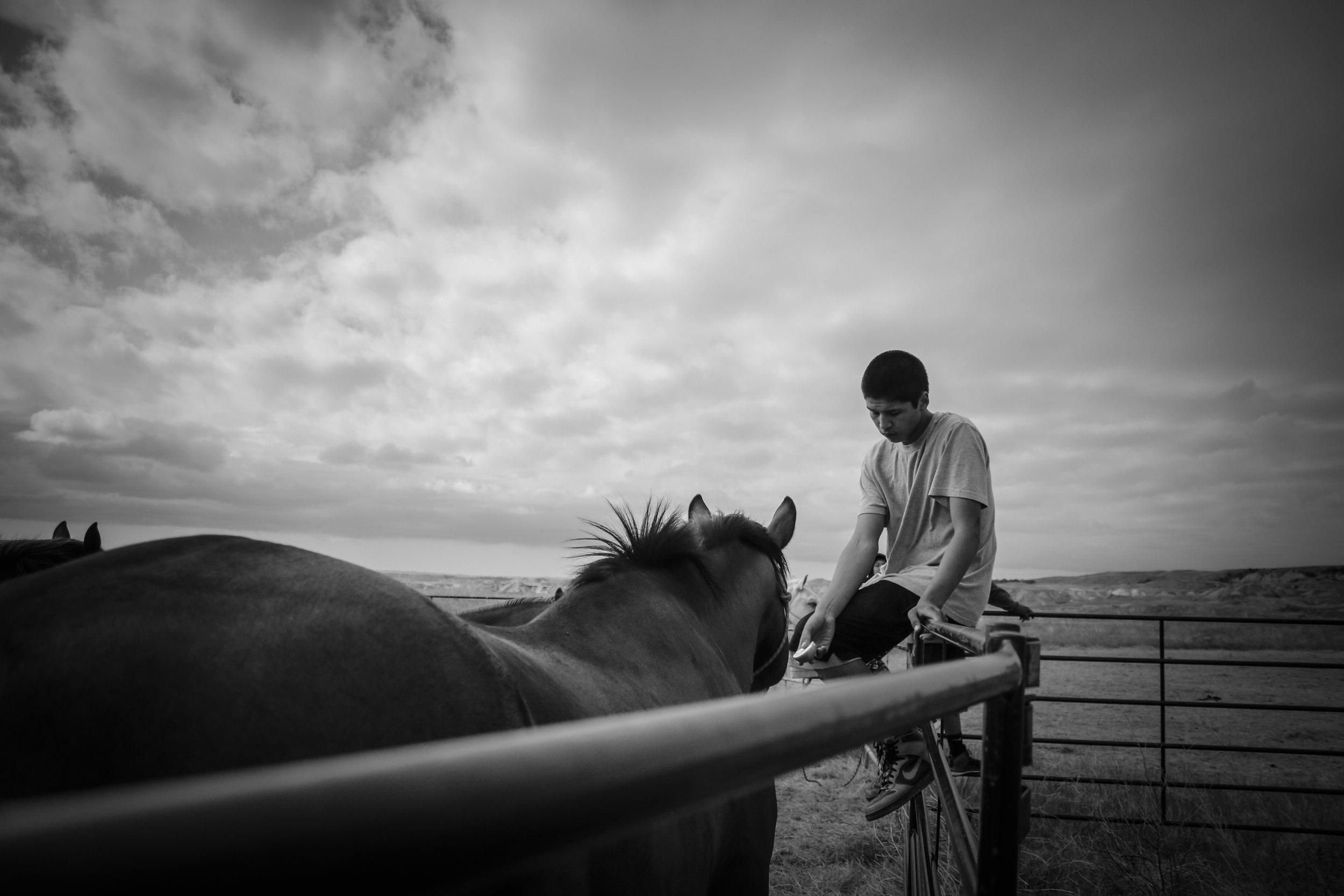 HSS_Boy_Feeding_Horse.jpg