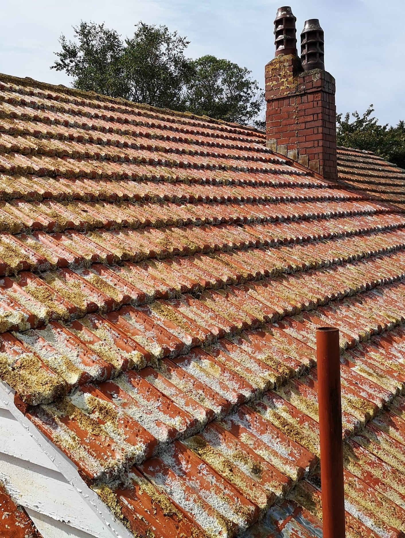 Roof%2BCleaning%2BWellington.jpg