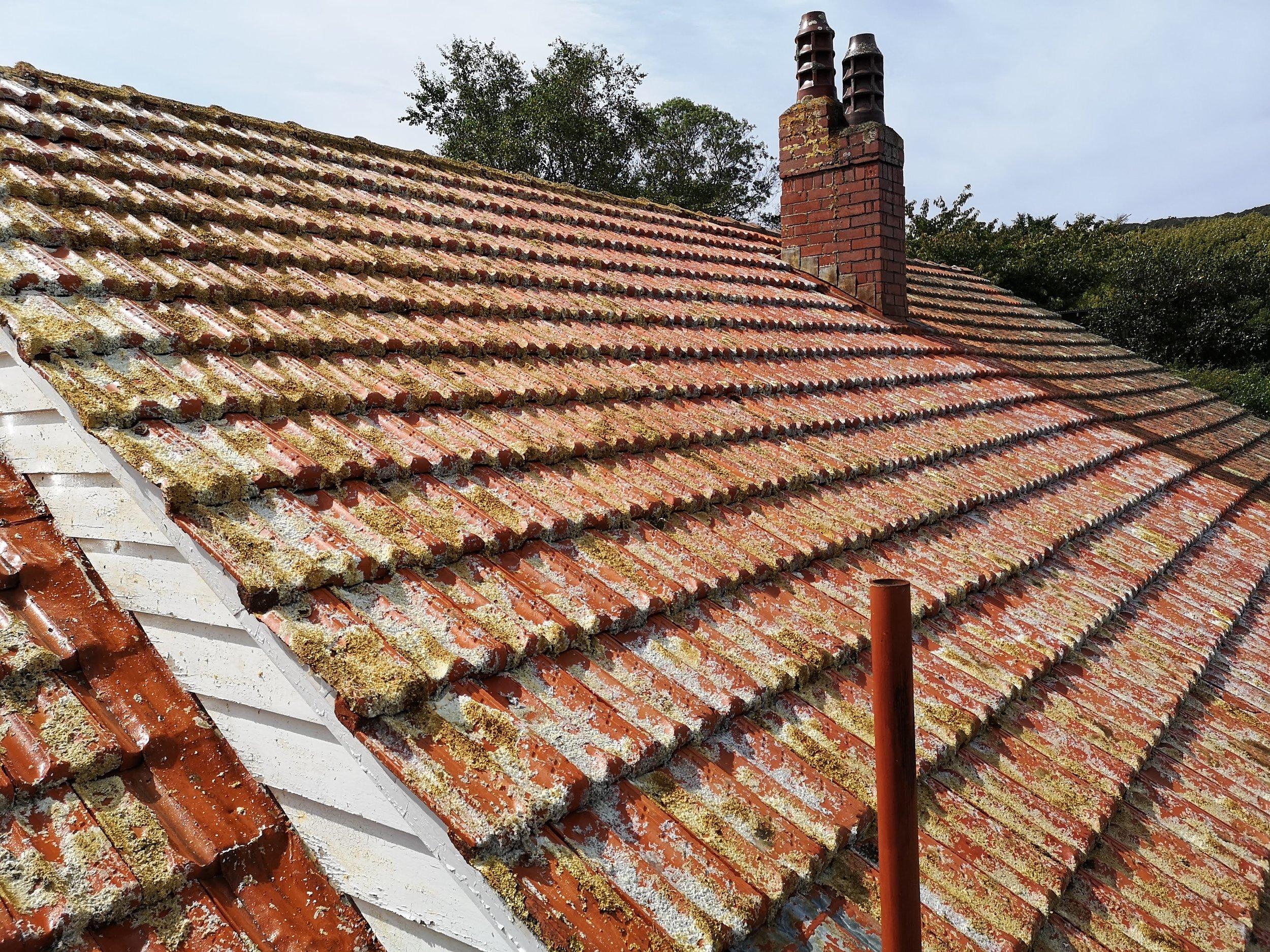 Roof Cleaning Wellington.jpg