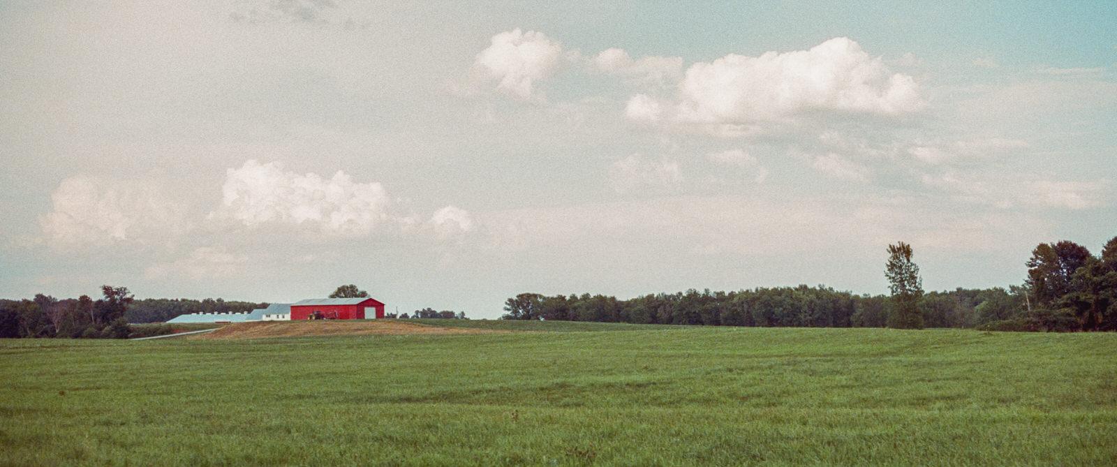 Cinestill 800T 35mm  North Hero, VT, USA