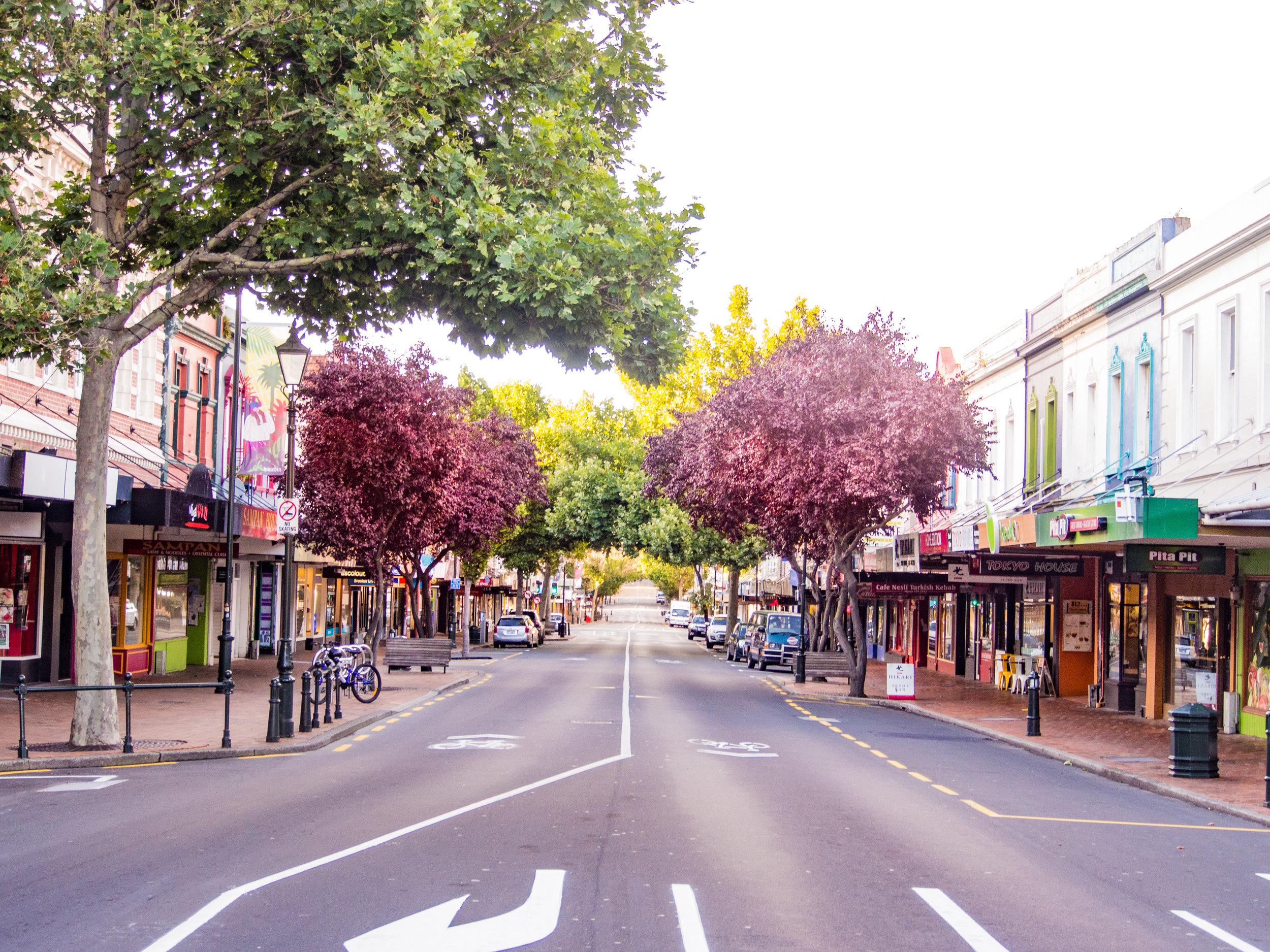 Dunedin city street