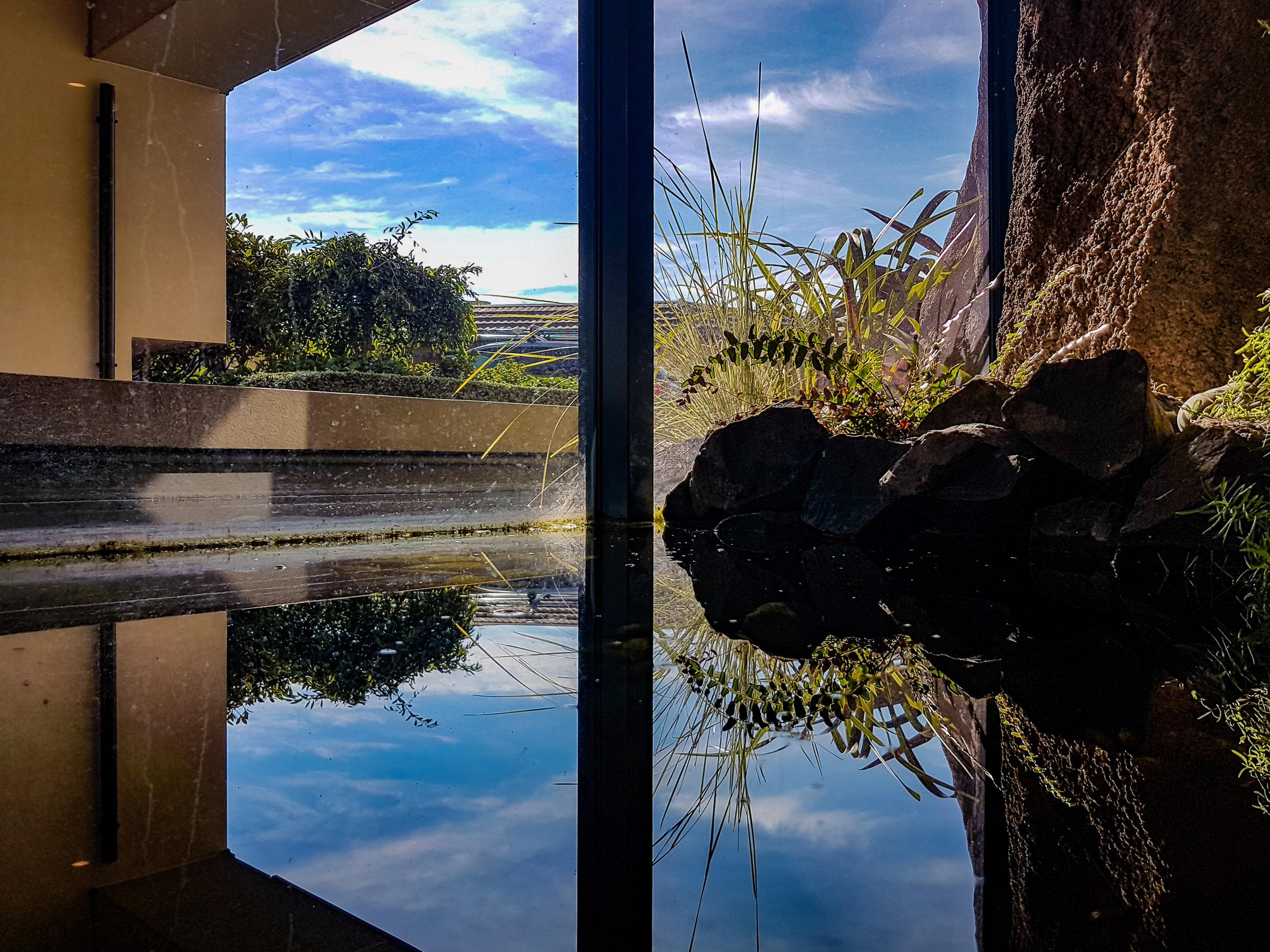 Reflection in water Francis Hodgekins Dunedin
