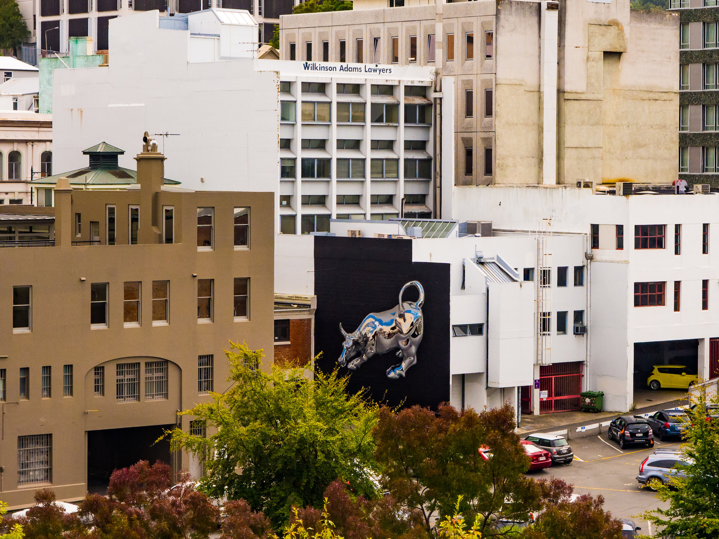 Bikismo street art Dunedin