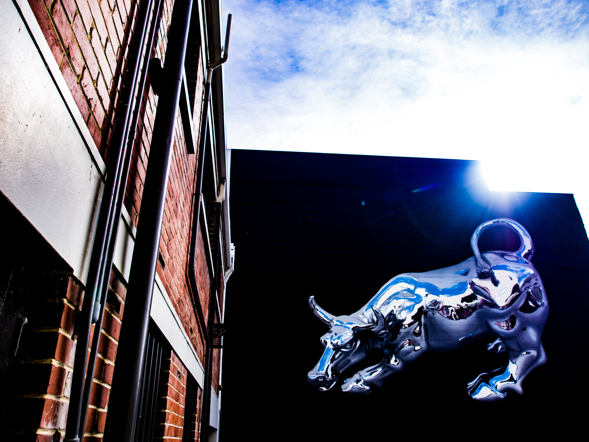 Bikismo street art Dunedin photography