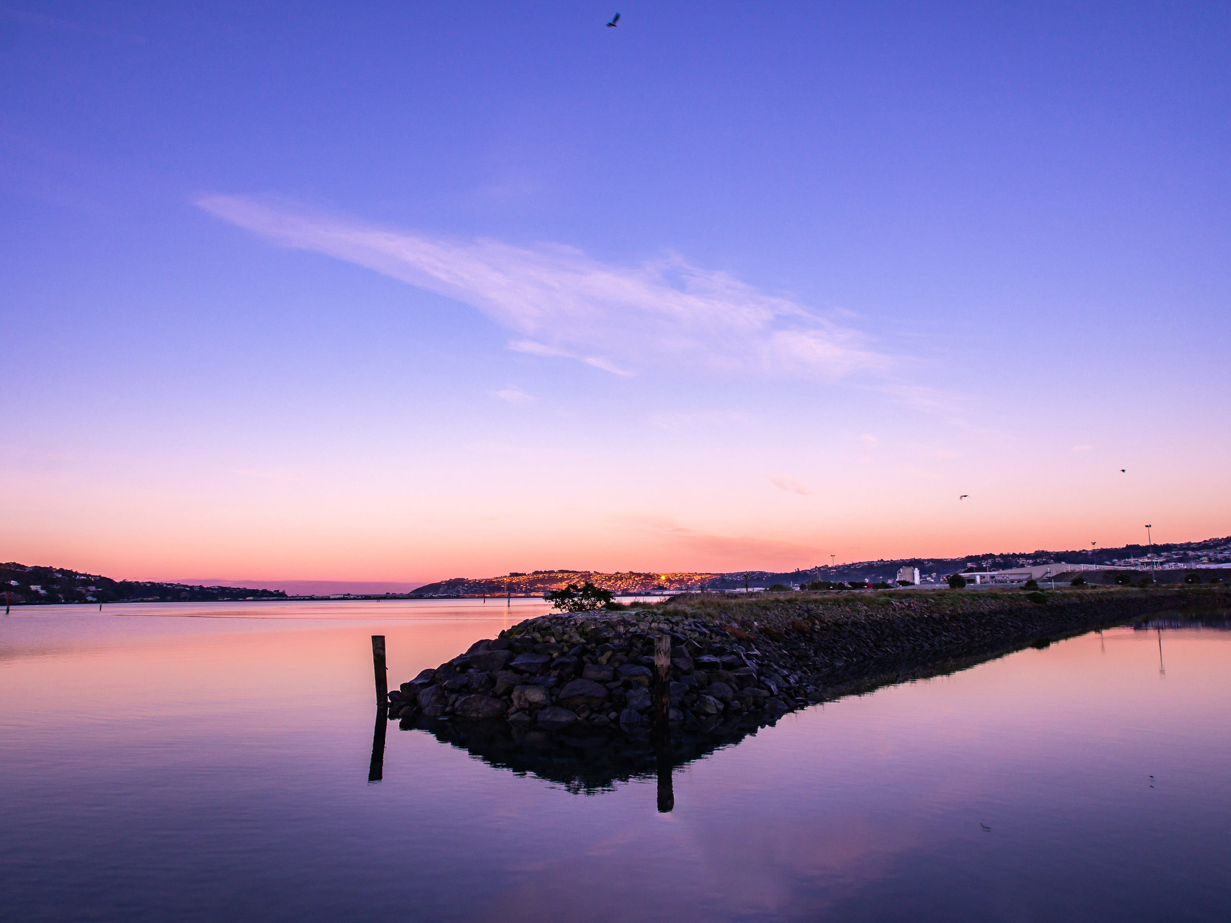 Harbour 4.jpg