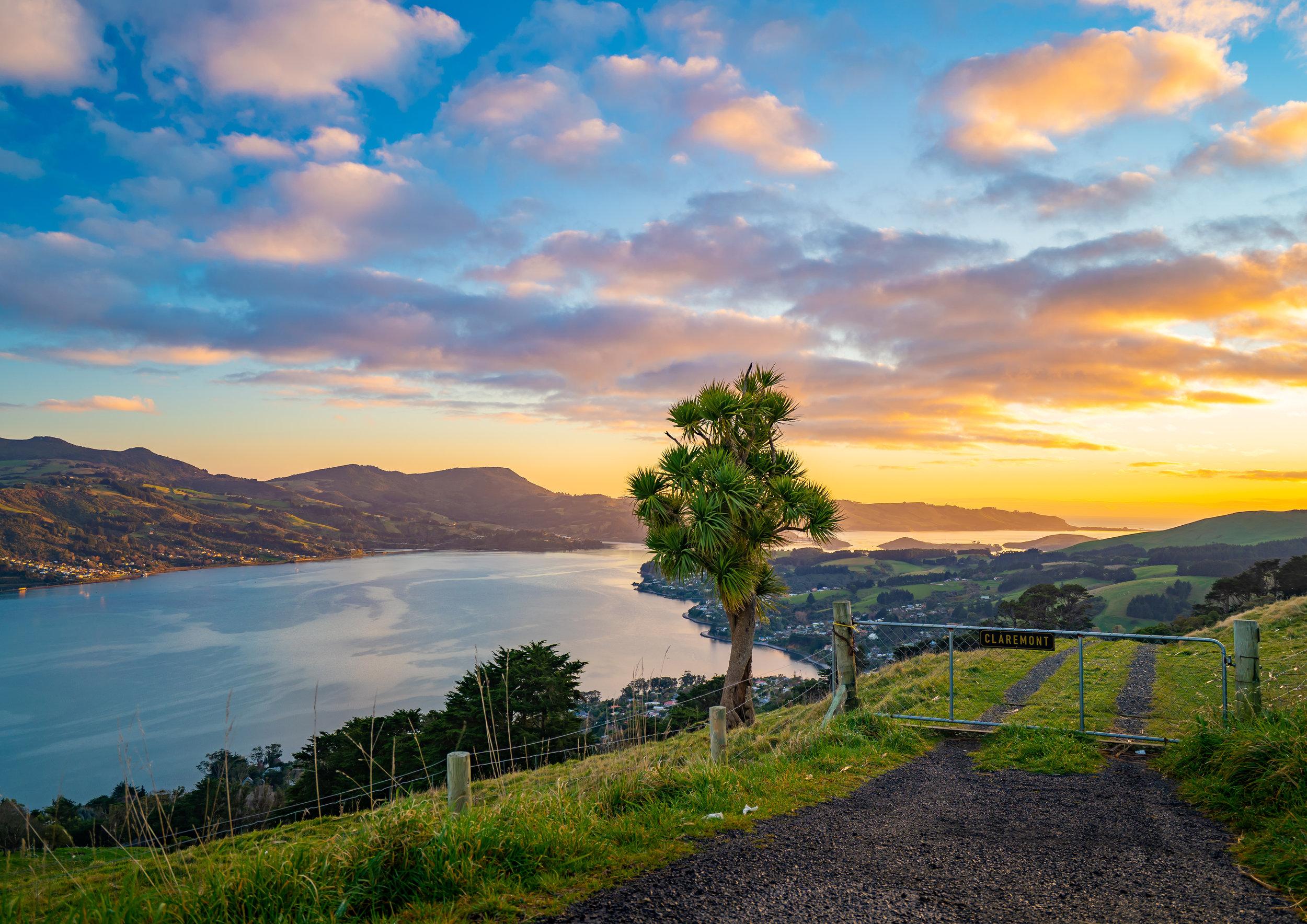 July A Otago Peninsula.jpg