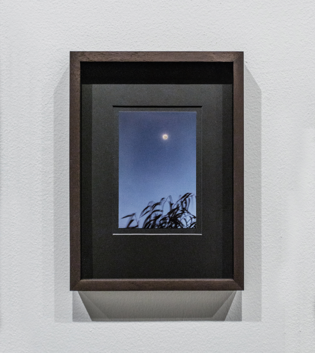 Moongold (3) 2016 Photograph Moon Gold leaf 15 x 10 cm  On random photographs taken by the artist, the moon, appearing very small, is gilded with Moon Gold leaf.