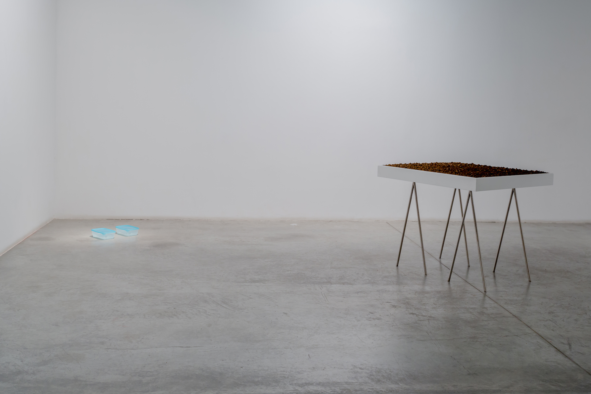 Installation view / I stood in the middle of the strait of Gibraltar and I dropped my left tear in the Atlantic ocean, and my right tear in the Mediterranean sea