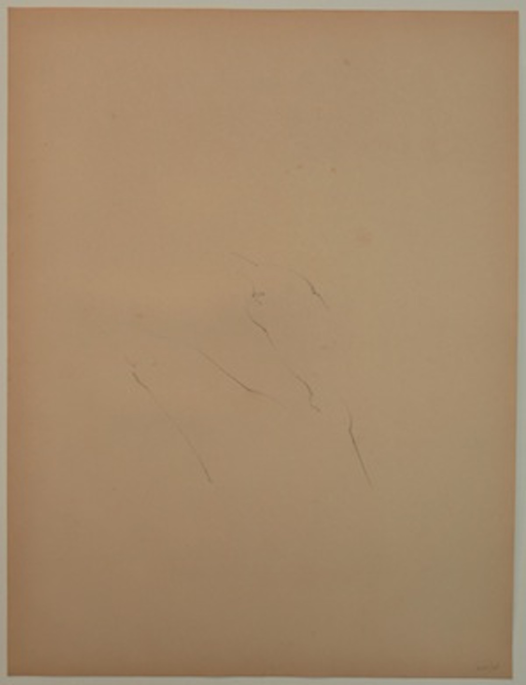 Lala Rukh  Untitled (7) 1983 – 1985 Conté on paper 74 x 56.5 cm