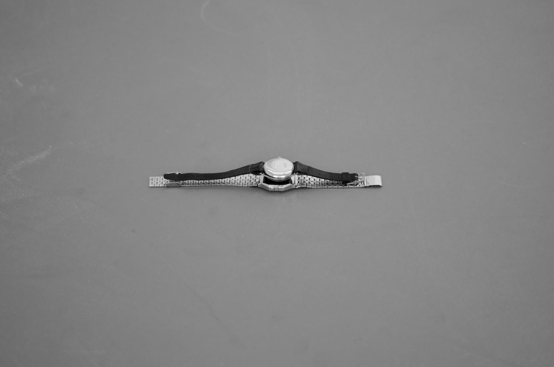 Vanitas vanitatum, et omnia vanitas 2013 Manual winding Wristwatch facing a Digital watch 3 x 20 cm