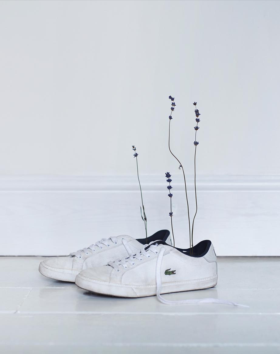 Lavender-shoes_1340_c.png