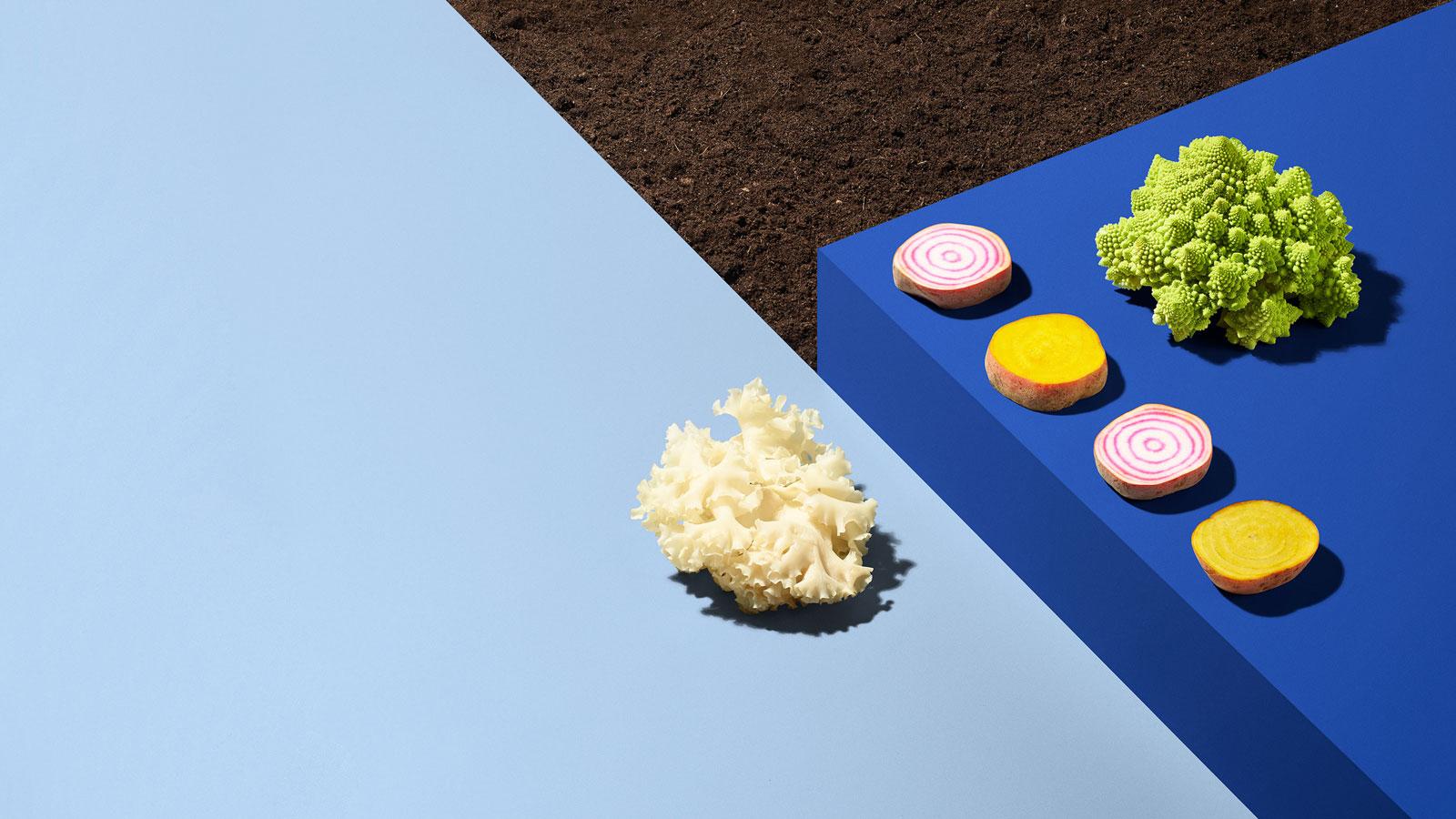 Bite Bæredygtighed crop.jpg