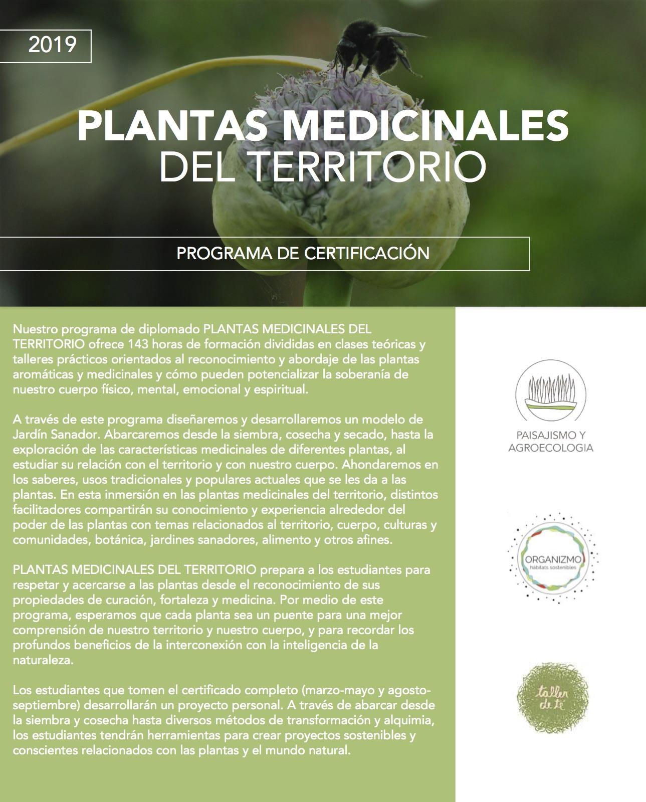 Planta.medicinales.jpg