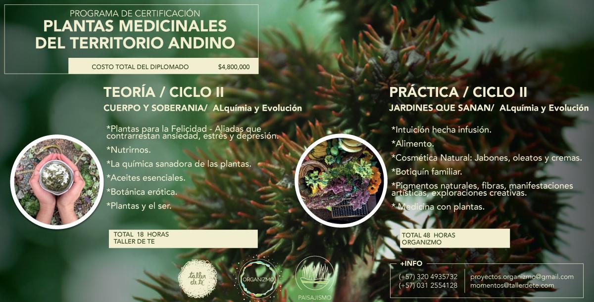 PLANTAS-MEDICINALES.-II.png