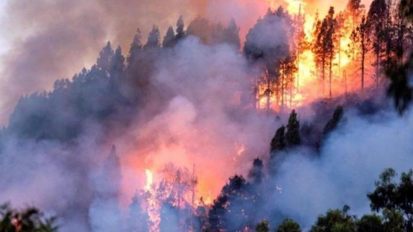 incendio-Amazonas-813x458.jpg