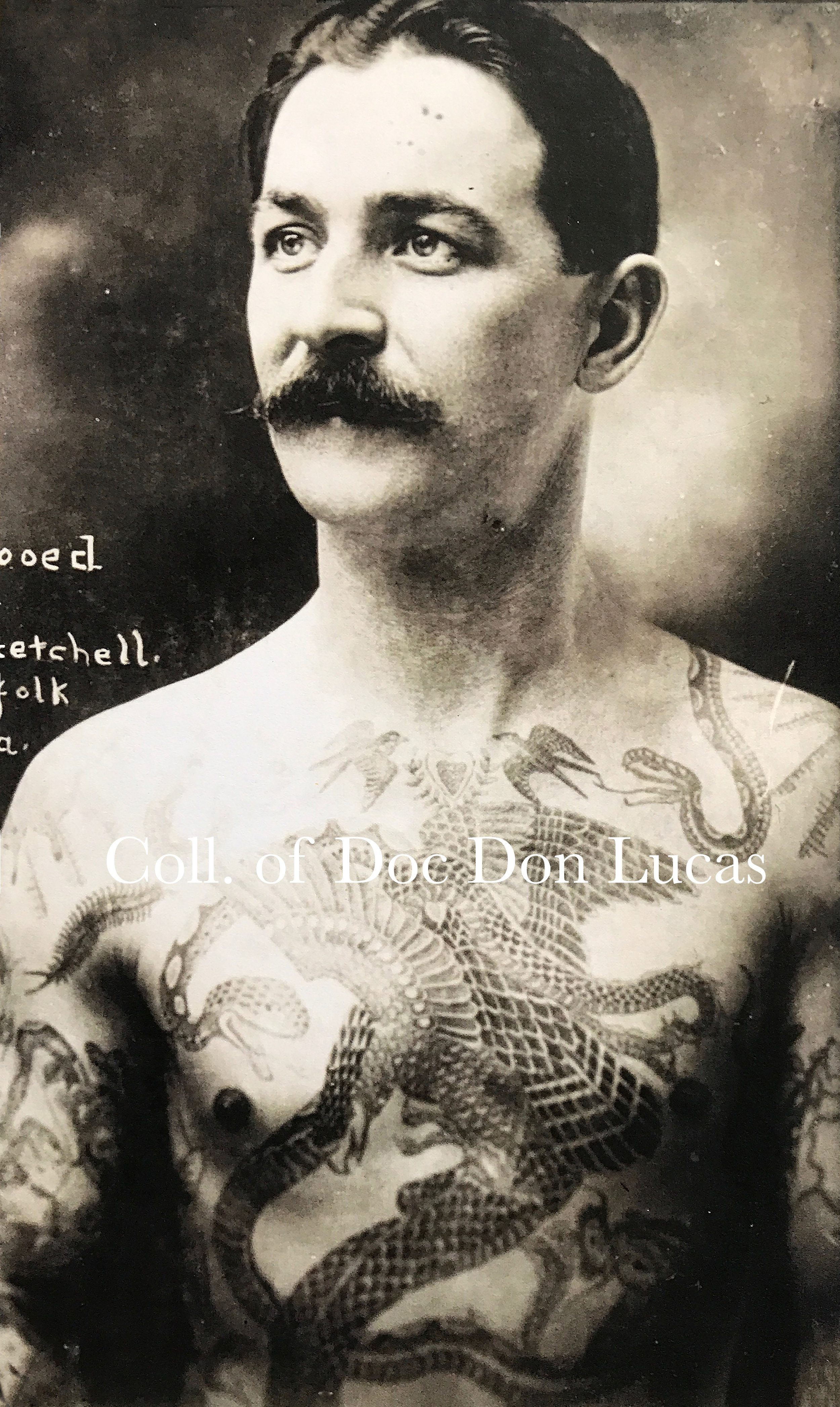 """Tattooed by Prof. Getchell, Norfolk, Va.,"" Photograph Duplicated from a Cabinet Card by William Ettlin, 17 Chatham Square, ca. 1904.  Courtesy of Doc Don Lucas"