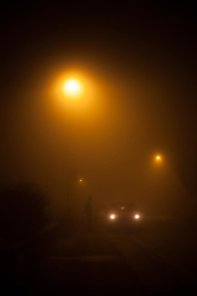 fog-Anna-Roberts-Photography-2.jpg