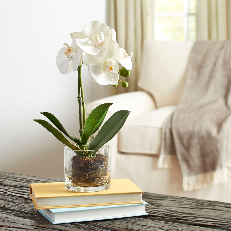 Faux+Orchid+in+Glass+Vase.jpg
