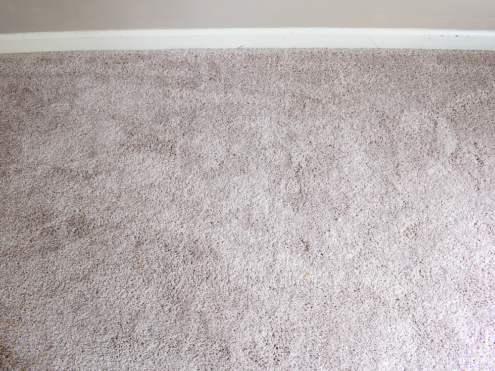 New Carpet Costs and Installation Process