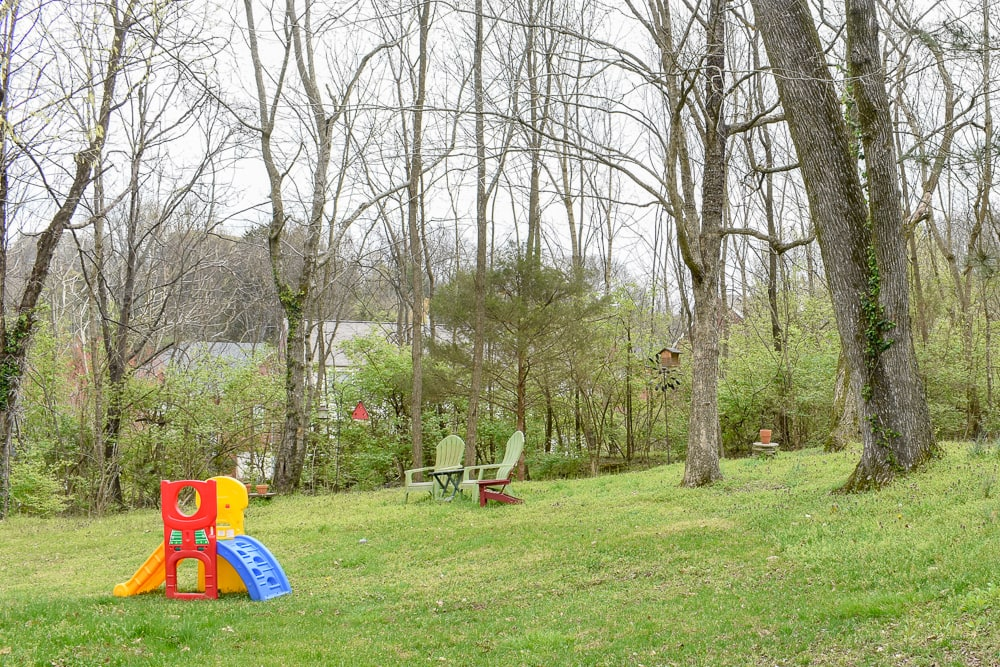 our backyard makeover before