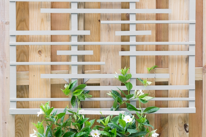DIY-Modern-Trellis-for-Vines-7.jpg