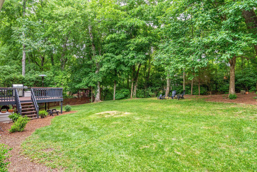 backyard after 4.jpg