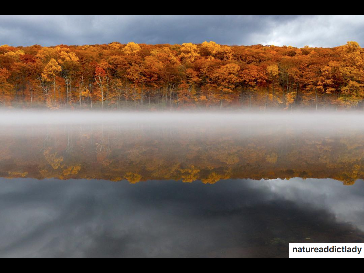 Fall8.jpg