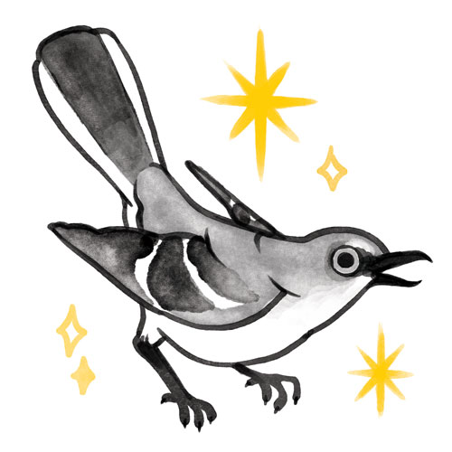 112618-4-Mockingbird.jpg