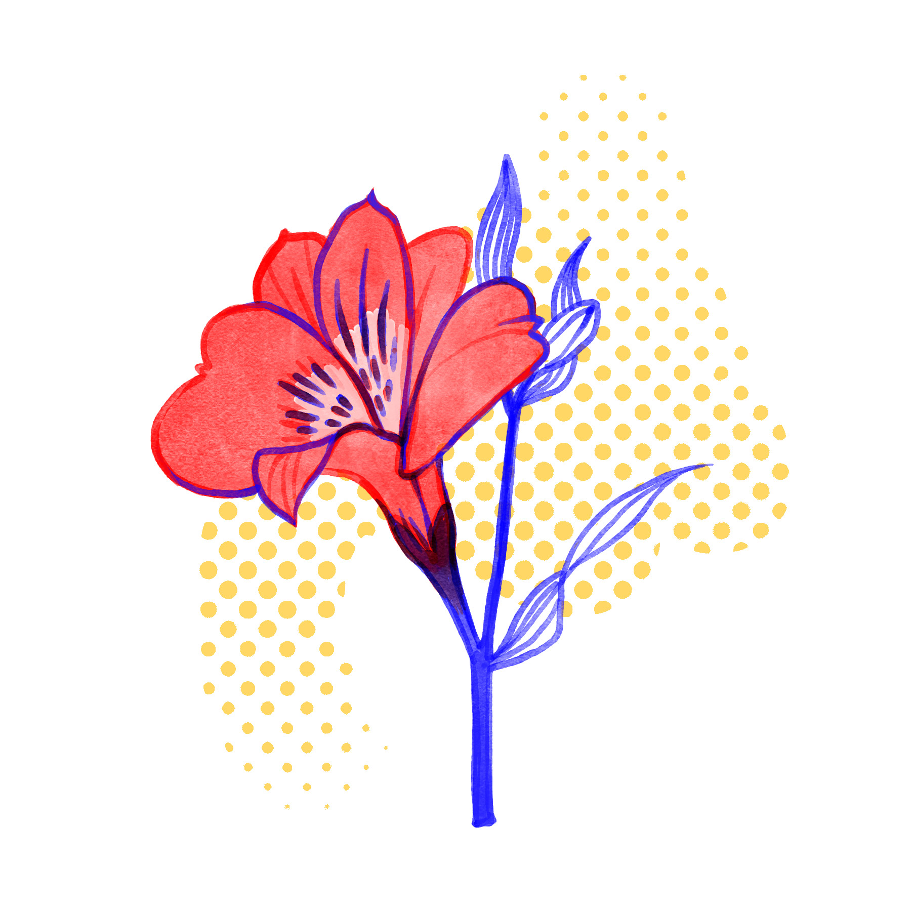 _Ephemora-Website-Illustration-Flor-10.29.18.jpg