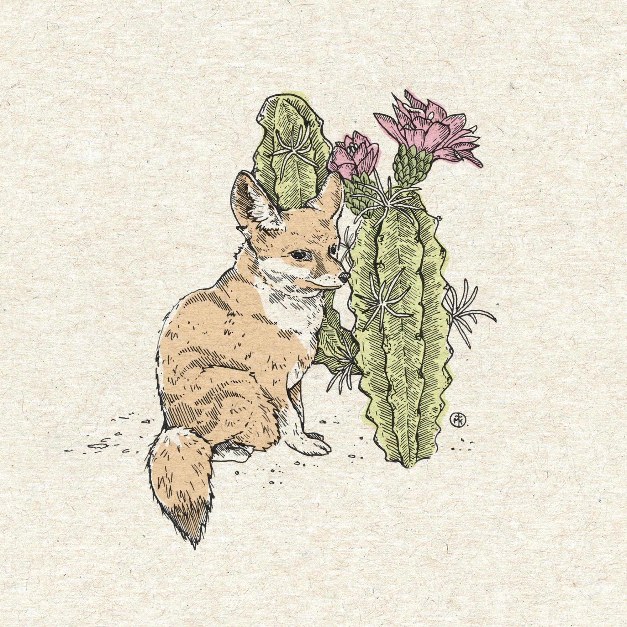 Fennec Fox with Cacti.jpg