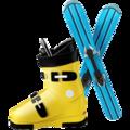 ski-and-ski-boot_1f3bf.png
